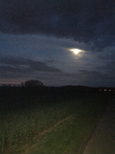 avance_nocturne